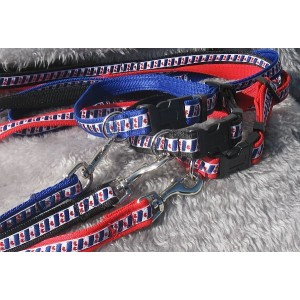 Friesevlag halsband set